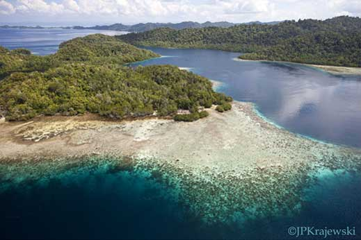 Raja Ampat islands fringing reef offer phenomenal diving